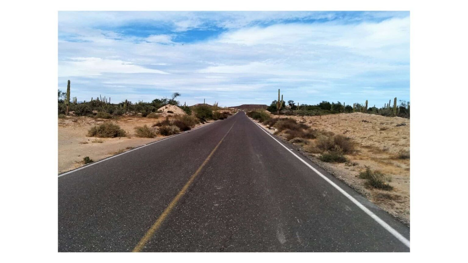 route dans le désert . contact guide francais mexique
