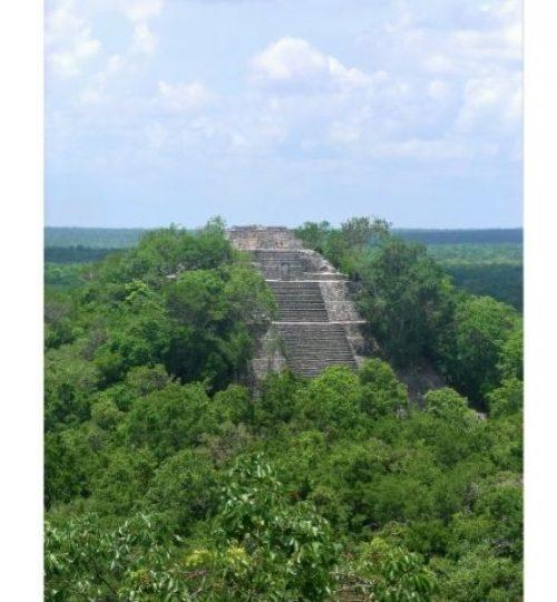 l'édifice 1 sur le site de Calakmul au Campeche. Dificile d'accès mais pas impossible avec les dernières aventures guide francais mexique