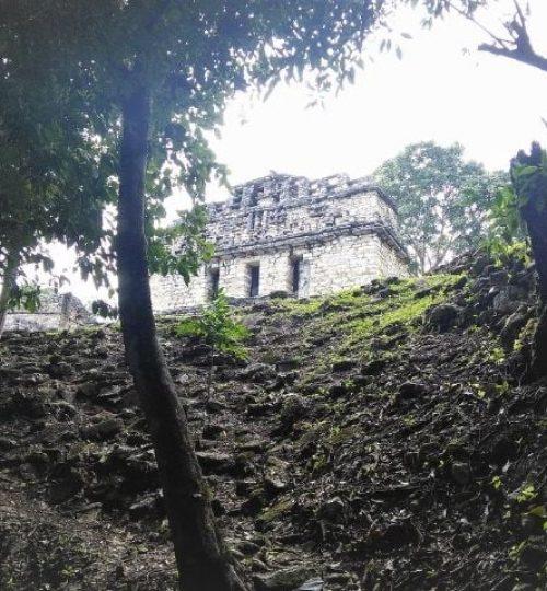 temple maya dans la jungle qui recouvre Yaxchilan , unes desdernières aventures guide francais mexique Chiapas