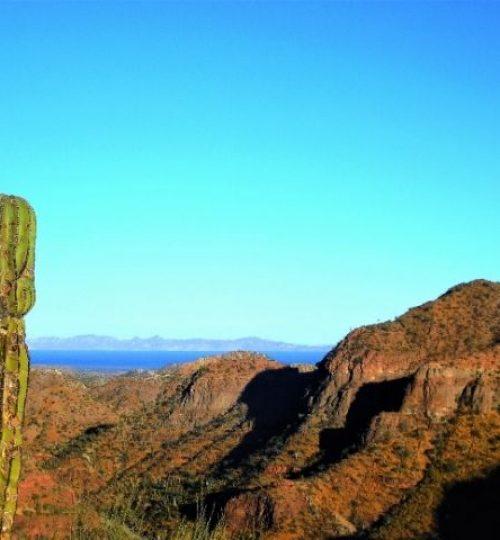 l'aventure mexicaine en Basse Californie du Sud